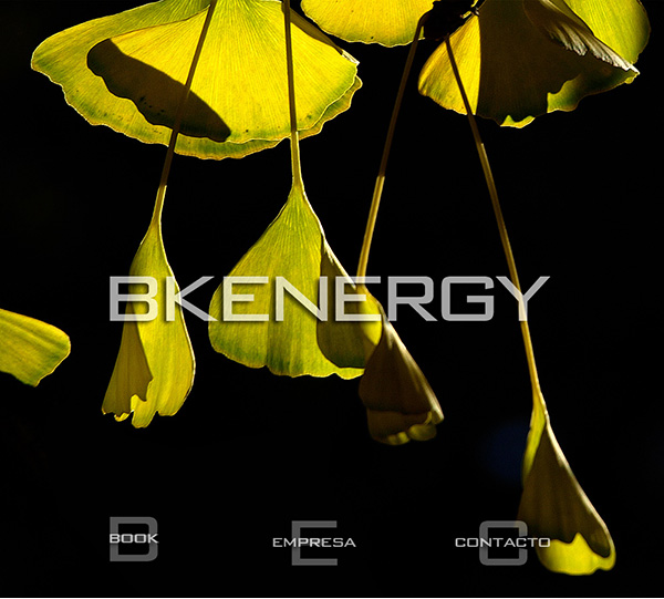 BK ENERGY. Home web
